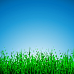 Hello Spring Poster With green grass and blue sky, Vector Illustration