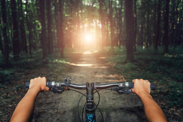 Mountain biking down hill descending fast on bicycle. View from bikers eyes. Wall mural
