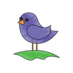 cute bird standing in the field cartoon vector illustration drawing image