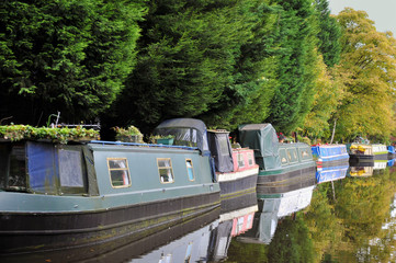 line of traditional narrow boats and houseboats moored along the canal with trees reflected in the still water in summer near hebden bridge in west yorkshire