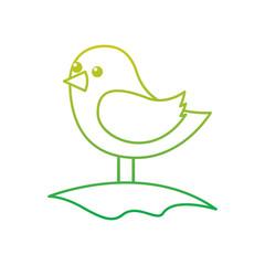 cute bird standing in the field cartoon vector illustration neon color line image