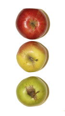 three apples, traffic light