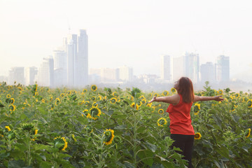 Beauty girl open arm on yellow sunflower field, raising hands. Freedom concept. Happy woman outdoors. Harvest. Sunflowers field in sunset.