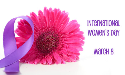 International Women's Day Pink Gerbera with symbolic purple ribbon on white wood table.