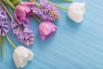 beautiful spring flowers on blue wooden background