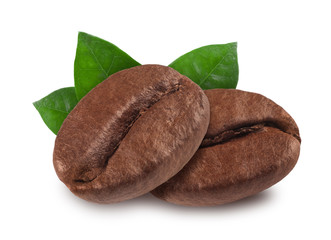 coffee bean isolated on white background, nature