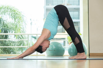 yoga class studio,asian woman master doing dolphin pose,Healthly lifestyle sport