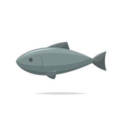 Fish vector isolated