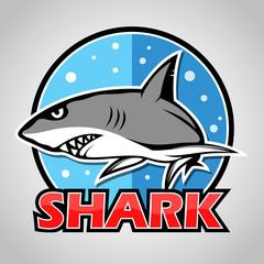 Cartoon shark mascot with blue circle