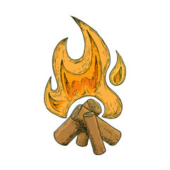 Bonfire for camping, cartoon sketch illustration. Vector