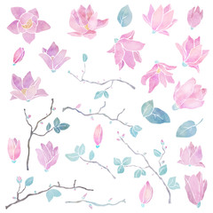 Hand painted floral watercolor set, magnolia flowers, branches and leaves
