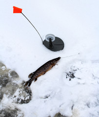 Winter fishing. Ice pike fishing in the ice hole