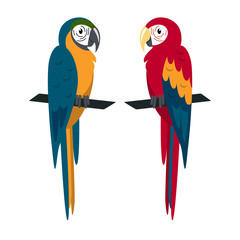 Macaw parrot icon in flat style