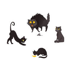 Vector cartoon black cat animals set. Funny flat domestic pets in different poses drinking cat bowl hunting stretching. Cute character halloween holiday symbol. Isolated illustration white background