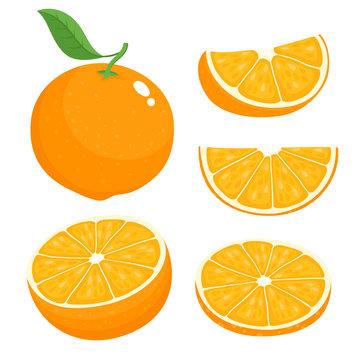 Bright vector set of colorful juicy orange.