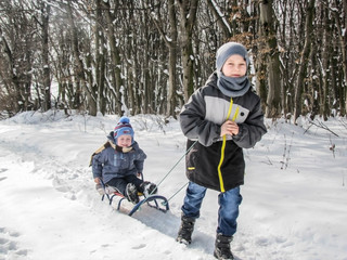 Children in the winter on the sled