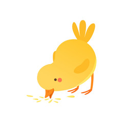 Cute baby chicken pecking grain, funny cartoon bird character vector Illustration isolated on a white background