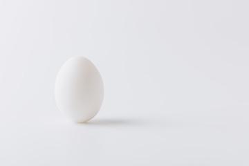 white egg laying on white background