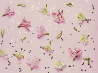 Spring flovers and magic stars on pink background. top view, flat lay.