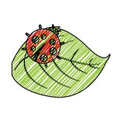 cute ladybug in leaf natural wildlife animal vector illustration
