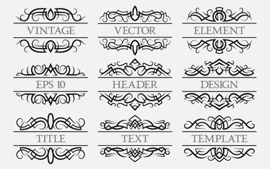 Vintage elements with a header field. Set of titles decorations.
