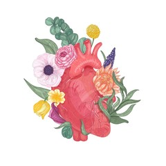 Realistic anatomical heart overgrown by blooming flowers and plants hand drawn on white background. Colorful vector illustration in vintage style for Valentine s day greeting card, party invitation.