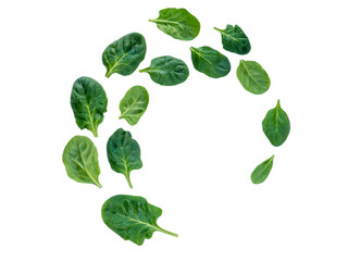 Spiral flying heap of spinach leaves