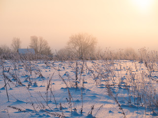 Sunny winter day, the sun rises, illuminating everything around it with its warm rays
