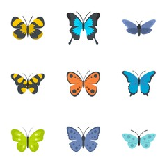 Moth icons set. flat set of 9 moth vector icons for web isolated on white background