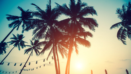 Silhouettes of palm trees against the sky on the sea beach during an amazing sunset.