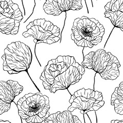 Hand drawn poppies on white background. Seamless pattern for design.