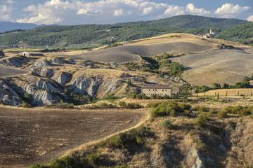 Summer landscape near Asciano