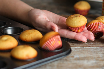 small muffins (cupcakes) - fresh pastries on a wooden surface