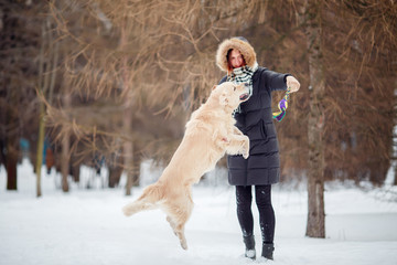 Image of woman playing with labrador in snowy park