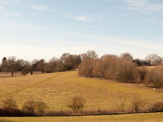 view of open green empty grass fields outside spring dedham vale landscape