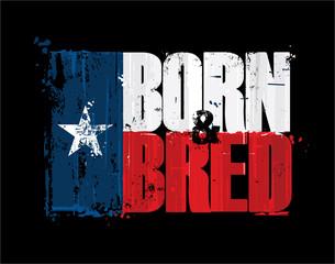 Texan Flag - Born n Bred