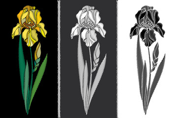 Vector set with embroidery Iris flower in pastel yellow, black and white, bud and leaves isolated. Floral patch with ornate embroidered Irises for clothing decor, fabric and textile design.