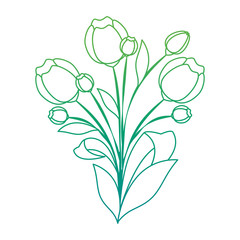 beautiful roses decorative icon vector illustration design