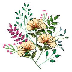 floral decoration vintage style vector illustration design