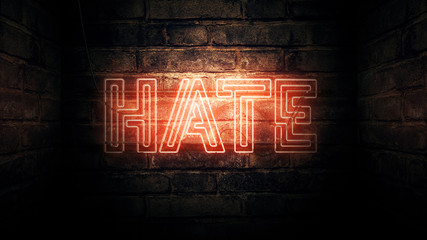 Hate Neon Sign