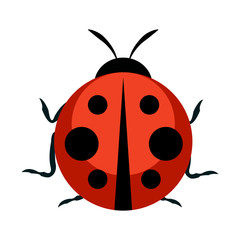 Cute Ladybug Icon. Vector Illustration