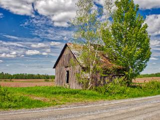An abandoned barn.
