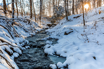 Winter stream in forest morning sunrise