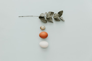 Flat lay minimal composition with eggs on pastel background