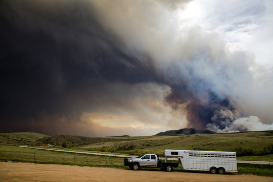 Wildfire Livestock Evacuation