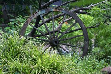 wheel, wood, wagon, wooden, cart, antique, vintage, carriage, farm, grass, wheels, western, country, transportation, rural, green, garden, rustic, barn, history, transport, retro, ancient, aged, spoke