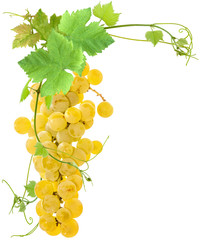 Wall Mural -  grappe de raisins blancs et feuilles de vigne