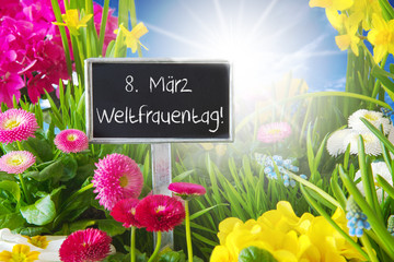 Sunny Spring Flower Meadow, Weltfrauentag Means International Womens Day