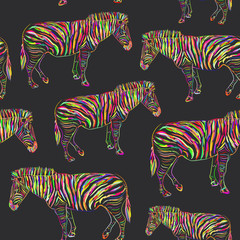 Rainbow Zebra portrait seamless pattern sketch on black background. Vector