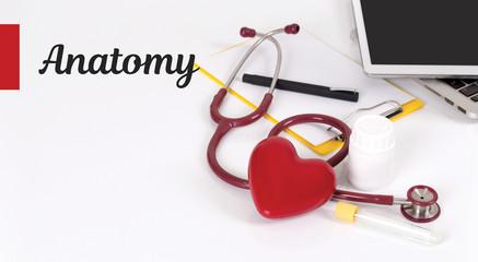 HEALTH CONCEPT: ANATOMY